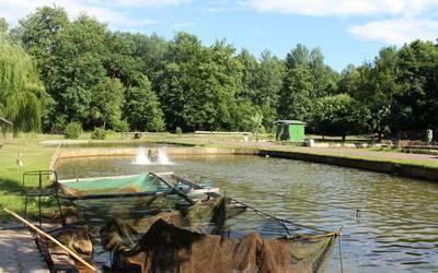Fischereibetrieb Marx in Wüstenjerichow © Landkreis Jerichower Land